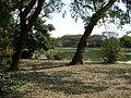 Ibirapuera 017 (6265107).jpg