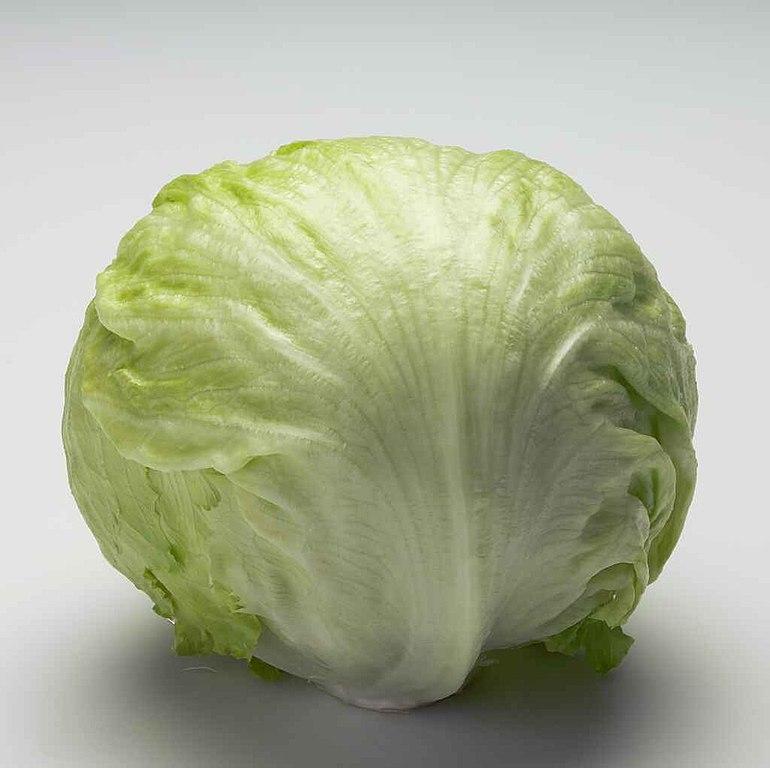 image of iceberg lettuce