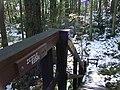 Icicle Ridge - panoramio.jpg