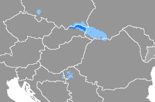 Rusyn language East Slavic language