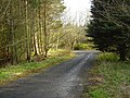 If you go down to the woods today - geograph.org.uk - 782353.jpg