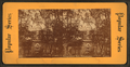 Independence Hall, Philadelphia, from Robert N. Dennis collection of stereoscopic views 3.png