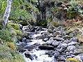 Innis na Larach, Glen Strathfarrar. - geograph.org.uk - 1521145.jpg
