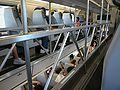 Inside Caltrain.JPG