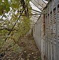 Interieur, oude muurkas, fruitmuur met latwerk, druivenranken - Beesd - 20404837 - RCE.jpg