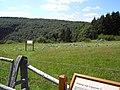 Irrgarten im Nationalpark Eifel - panoramio.jpg