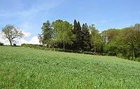 Jüdischer Friedhof Schwelm - Blick von Süden.jpg