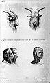J.C. Lavater, L'Art de connaitre les hommes... Wellcome L0025301.jpg
