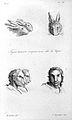 J.C. Lavater, L'Art de connaitre les hommes... Wellcome L0025305.jpg