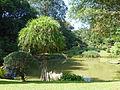 Jardin botanique de Kandy-Sri Lanka (4).jpg