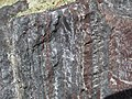 Jaspilite banded iron formation (Soudan Iron-Formation, Neoarchean, ~2.69 Ga; Rt. 169 roadcut between Soudan & Robinson, Minnesota, USA) 11 (18419358663).jpg