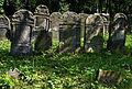Jewish cemetery Szydlowiec IMGP7642.jpg