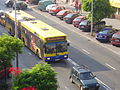 Kalisz-autobus MZK.jpg