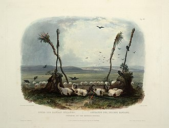 Mandan - Offering of the Mandan Indians, aquatint by Karl Bodmer
