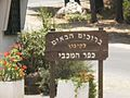 Kfar HaMaccabi 3.JPG