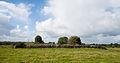 Kilcreevanty Abbey East Range 2010 09 16.jpg