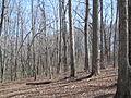 Kings Mountain National Military Park - South Carolina (8557787919) (2).jpg