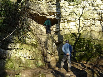 Kirkdale Cave - Entrance to Kirkdale Cave