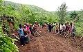 Kivu road.jpg