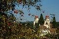 Kloster-Rheinau-Apfelernte.jpg