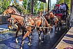 Knott's Berry Farm Wells Fargo Lines Stagecoach (24468981533).jpg