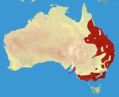 Distribuição original em vermelho, região onde foi introduzido em rosa.