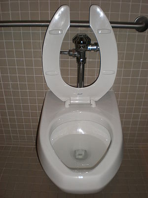 A Kohler toilet in Palo Alto, California.