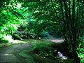 Koleshino Waterfall , 9.JPG