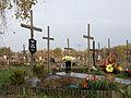 Komunalny Cmentarz Południowy w Warszawie 2011 (40).JPG