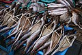 Korea-Busan-Haeundae Market-Dried fish-01.jpg