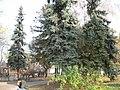 Korol'ovs'kyi district, Zhytomyr, Zhytomyrs'ka oblast, Ukraine - panoramio (2).jpg