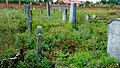 Koronowo - cmentarz ludności żydowskiej - panoramio (29).jpg