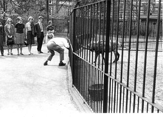 Adriaan Kortlandt - Kortlandt demonstrates how a goat responds to his goatlike attack.