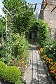 Kto przy Obrze temu dobrze – ogród nad Obrą - Zbąszyń - 001121c.jpg