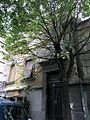 Kuća Bete i Riste Vukanovića 6.jpg