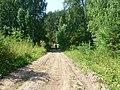 Kungursky District, Perm Krai, Russia - panoramio (143).jpg