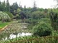 Kunming Botanical Garden - DSC03074.JPG