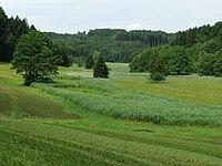 Kupferbachtal-1.jpg