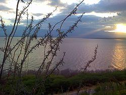 Lago Enriquillo2.jpg