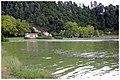 Lagoa das Furnas - panoramio (10).jpg