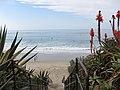 Laguna Beach (12035952145).jpg
