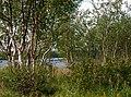Lammaskoski, Könkämöeno - panoramio (3).jpg