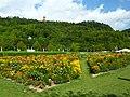 Landesgartenschau Horb am Neckar - (03).jpg