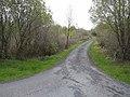 Lane at Corrabarrack - geograph.org.uk - 1308275.jpg