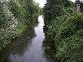 Le Cosson à Candé-sur-Beuvron - 00.jpg