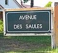 Le Touquet-Paris-Plage 2019 - Avenue des Saules (Whitley).jpg