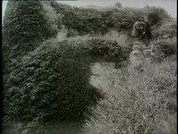 File:Le trésor des Musgraves (1912).webm