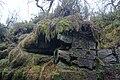 Leekfrith, UK - panoramio (3).jpg