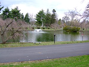 Lexington Cemetery - One of the ponds at Lexington Cemetery