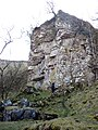 Limestone crag, Argill Beck - geograph.org.uk - 1779678.jpg